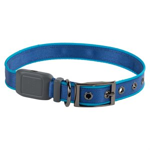 Nite Ize NiteDog Rechargeable LED Collar - Large - Blue